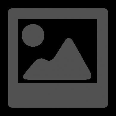 Anisoprint: stenski nosilec